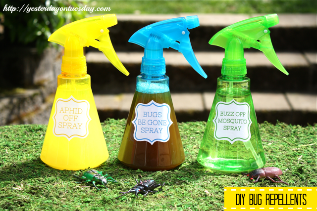 how to make an insect repellant