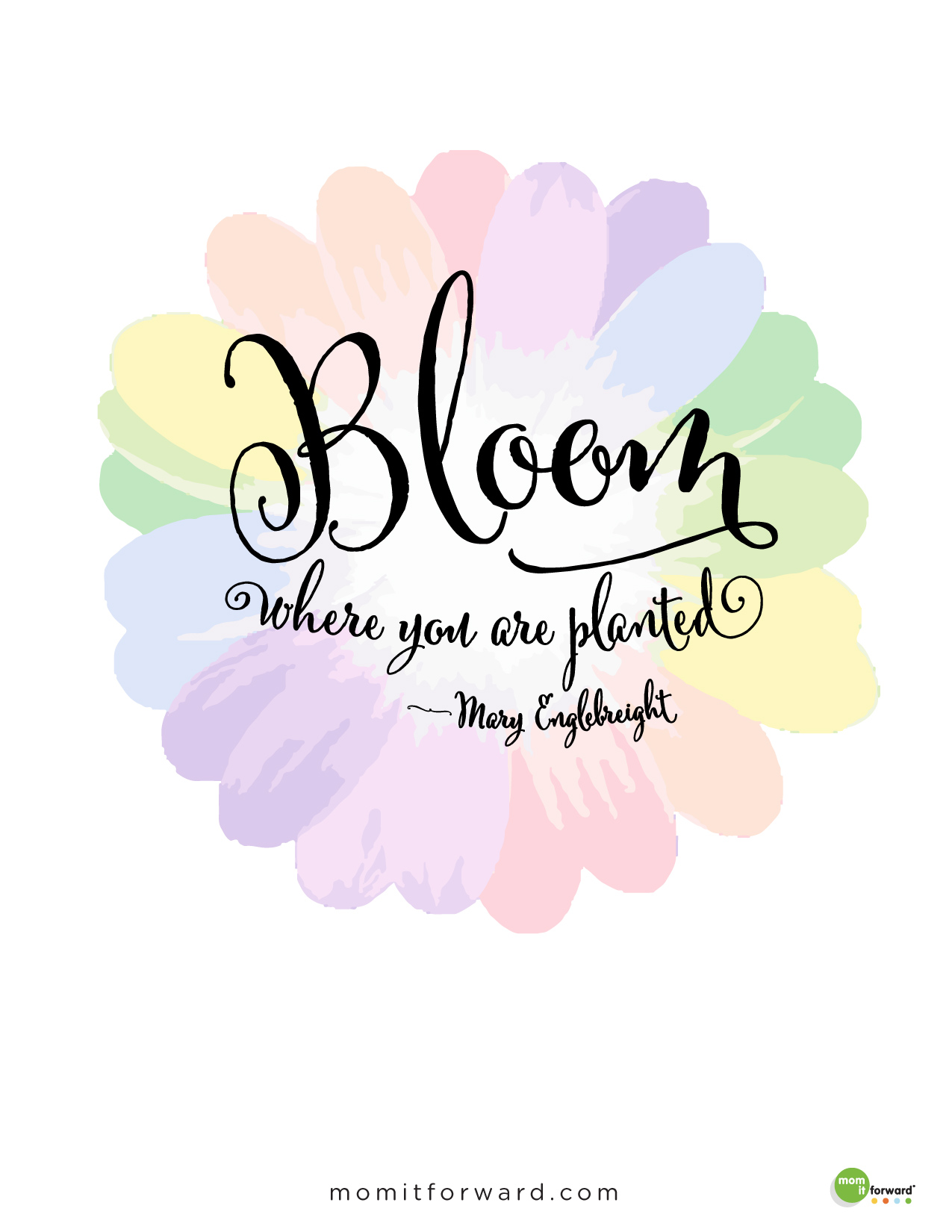 Bloom Quotes Amusing Quote Bloom Where You Are Planted  Mom It Forwardmom It Forward